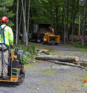 Emergency Tree Removal-Encinitas CA Tree Trimming and Stump Grinding Services-We Offer Tree Trimming Services, Tree Removal, Tree Pruning, Tree Cutting, Residential and Commercial Tree Trimming Services, Storm Damage, Emergency Tree Removal, Land Clearing, Tree Companies, Tree Care Service, Stump Grinding, and we're the Best Tree Trimming Company Near You Guaranteed!