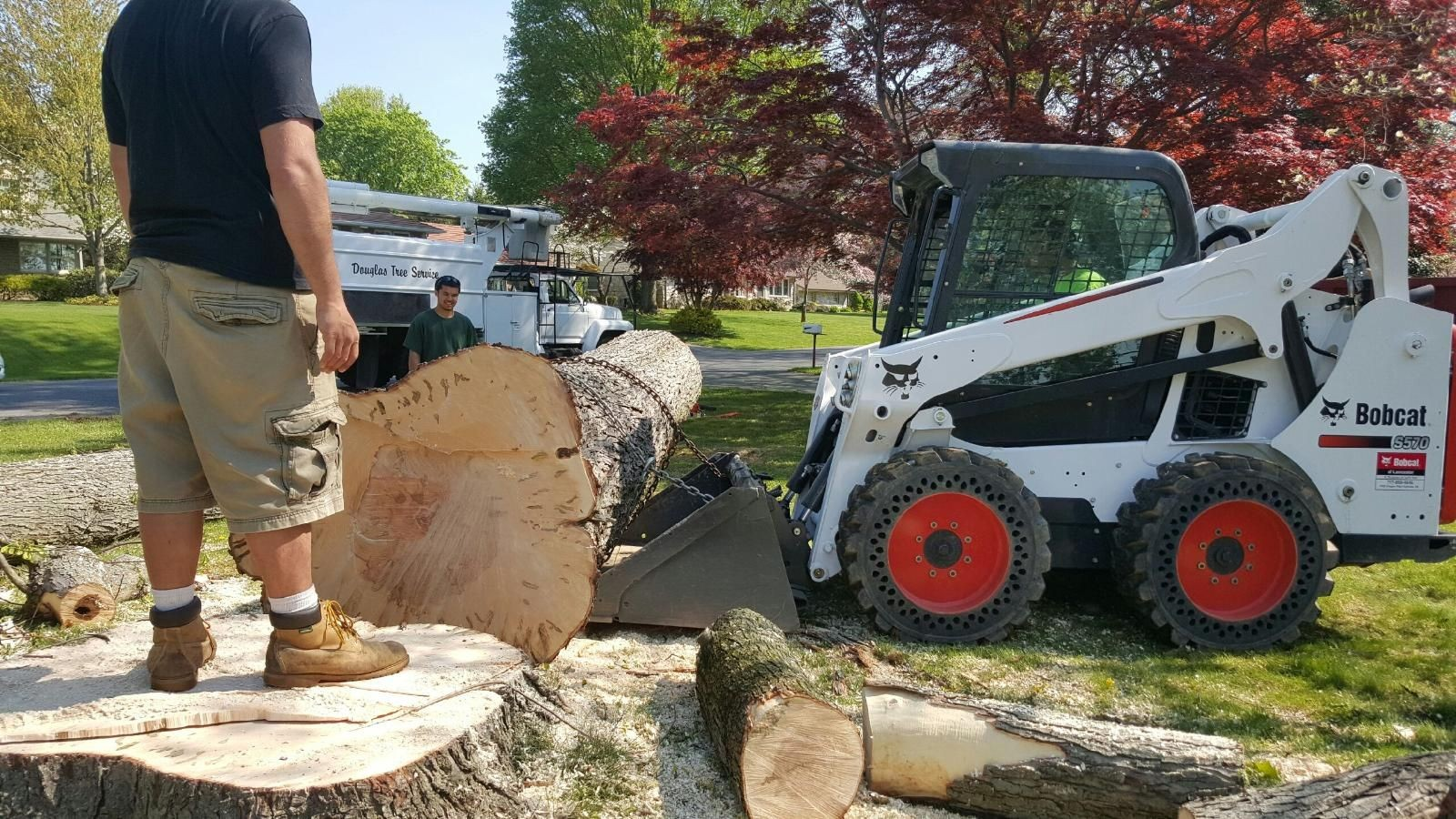 Rancho Santa Fe-Encinitas CA Tree Trimming and Stump Grinding Services-We Offer Tree Trimming Services, Tree Removal, Tree Pruning, Tree Cutting, Residential and Commercial Tree Trimming Services, Storm Damage, Emergency Tree Removal, Land Clearing, Tree Companies, Tree Care Service, Stump Grinding, and we're the Best Tree Trimming Company Near You Guaranteed!