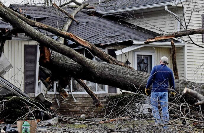 Storm Damage-Encinitas CA Tree Trimming and Stump Grinding Services-We Offer Tree Trimming Services, Tree Removal, Tree Pruning, Tree Cutting, Residential and Commercial Tree Trimming Services, Storm Damage, Emergency Tree Removal, Land Clearing, Tree Companies, Tree Care Service, Stump Grinding, and we're the Best Tree Trimming Company Near You Guaranteed!